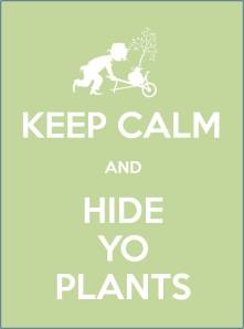 KEEP CALM AND HIDE YO PLANTS
