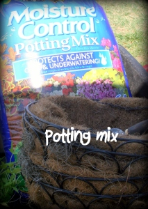 potting mix with moisture control and fertilizer