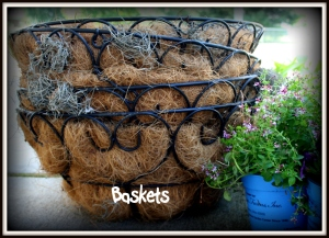 wire baskets with coir liners