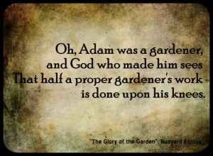Rudyard Kipling Glory of the Garden