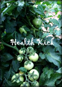 Health Kick tomatoes