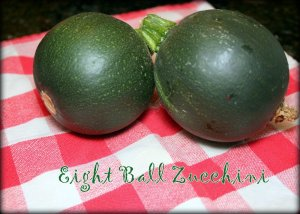 eight ball zucchini